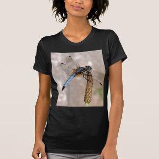 ¡Libélula! Camisetas