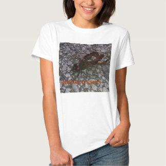 libélula del saddlebag camisetas