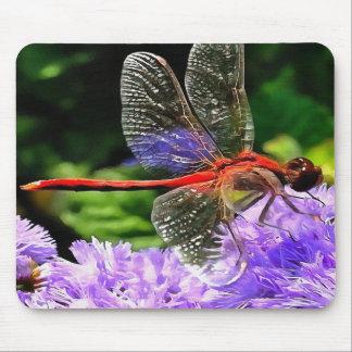 Libélula roja en las flores púrpuras violetas alfombrilla de ratón