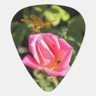 Libélula y mariquita en color de rosa rosado plectro