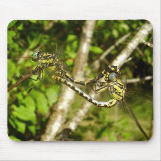 libélulas Club-atadas que acoplan la estera del Alfombrilla De Ratón