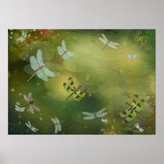 Libélulas e ilustraciones de Lillies del agua Póster