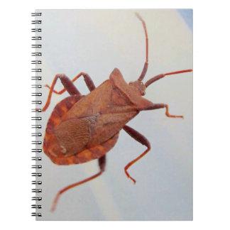 Libreta Con Fotos (80 Páginas Insectos