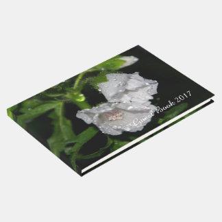 Libro De Visitas Malvales