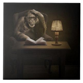 Libro del mono del mono azulejo de cerámica