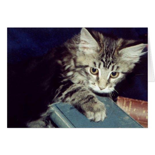 Libros y gatos tarjeta de felicitación