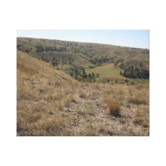 Lienzo Altas colinas del desierto