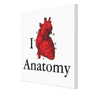 Lienzo Amo la anatomía