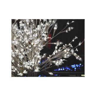Lienzo Árbol ligero de la pluma en la noche