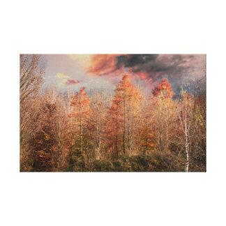 Lienzo árboles coloridos en parque en otoño