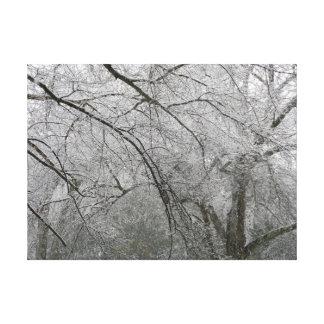 Lienzo Árboles congelados