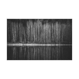 Lienzo Árboles de abedul en la orilla del lago