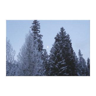 Lienzo Árboles del invierno en la fotografía del paisaje