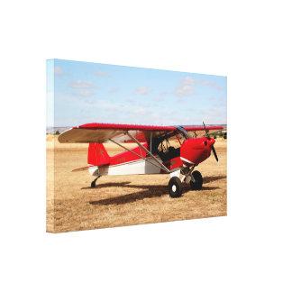 Lienzo Avión de Cub del deporte, avión de ala alta