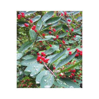Lienzo Bayas rojas en el rocío de la mañana