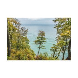 Lienzo Bosque costero en la costa de mar Báltico