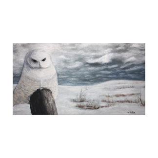 Lienzo Búho de la nieve en Prarie