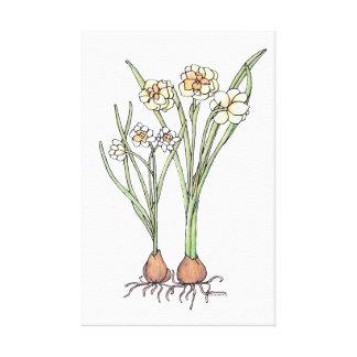 Lienzo Bulbos de la primavera