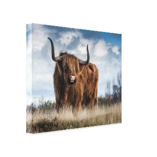 Lienzo Bull