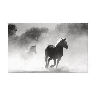 Lienzo Caballos corrientes en blanco y negro.