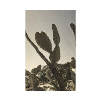 Lienzo Cactus salvaje en Tejas