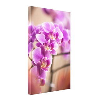 Lienzo Cadena de flor de color rosa oscuro de la orquídea