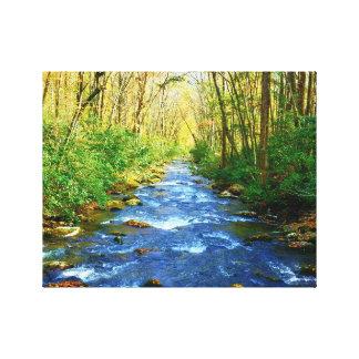 Lienzo Cala de Great Smoky Mountains - arroyo de la