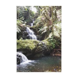 Lienzo Cascada en los jardines botánicos hawaianos