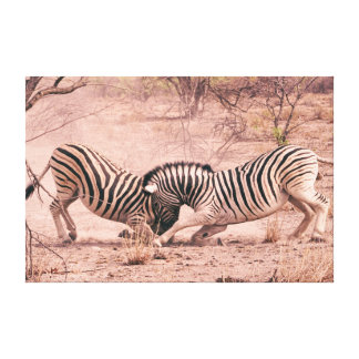 Lienzo Cebras que luchan