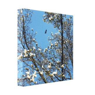 Lienzo cielo en primavera