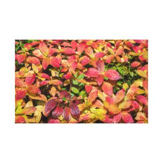 Lienzo Colores del otoño