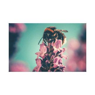 Lienzo Coloridos lindos manosean la abeja
