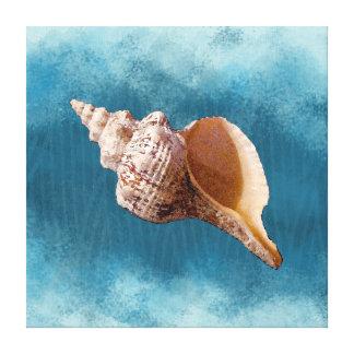 Lienzo Concha Shell en lona