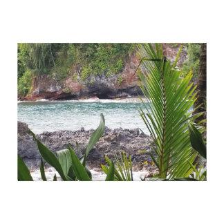 Lienzo Corriente que fluye hawaiana