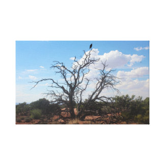 Lienzo Cuervo de Pajaro