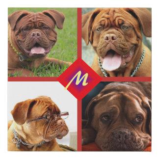 Lienzo De Imitación Collage de la foto cualquier plantilla del perro