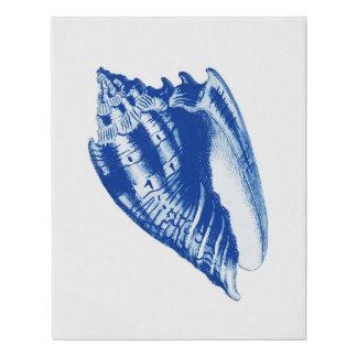 Lienzo De Imitación Concha Shell del turbante, azules añiles y blanco
