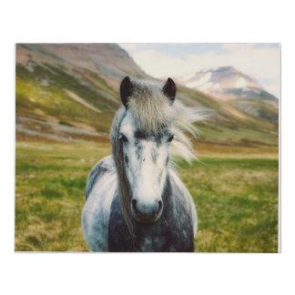 Lienzo De Imitación Lona gris del caballo