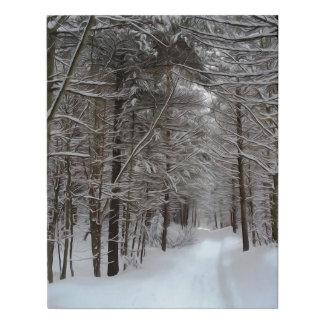 Lienzo De Imitación Paisaje del invierno