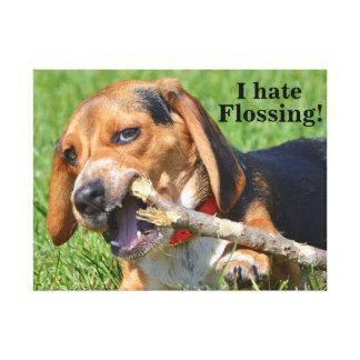Lienzo Divertido odio Flossing el beagle que mastica en