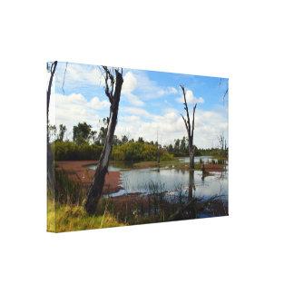 Lienzo Donde el juego Riverland Australia de la fauna,