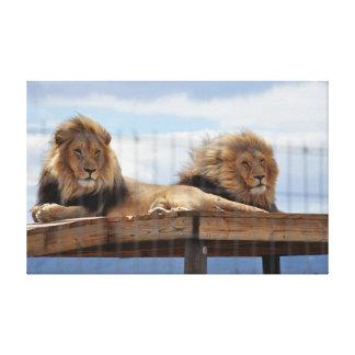 Lienzo Dos leones en un andamio