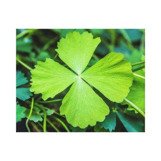 Lienzo El día de St Patrick