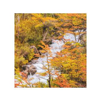 Lienzo Escena coloreada del paisaje del bosque, Patagonia