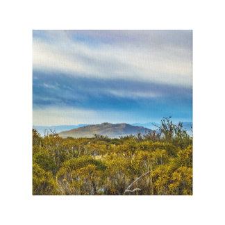 Lienzo Escena patagona del paisaje, Santa Cruz, la