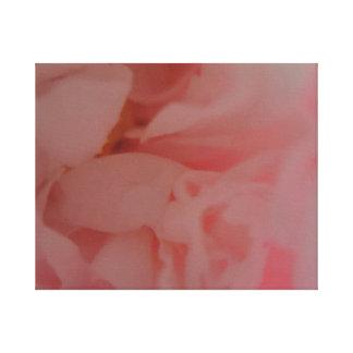 Lienzo Flor atractiva del peony del resplandor