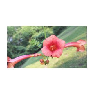 Lienzo Flor de Honduras