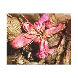 Lienzo Flor distintivo del rosa de la foto del primer