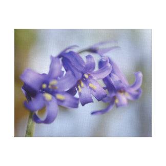 Lienzo Flor hermosa del bluebell de la foto del primer