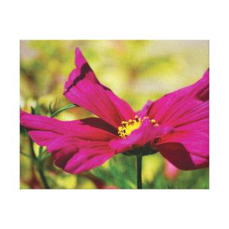 Lienzo Flor hermosa del rosa de la foto del primer en